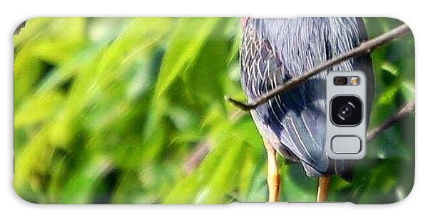 Green Heron Galaxy Case by Sumoflam Photography