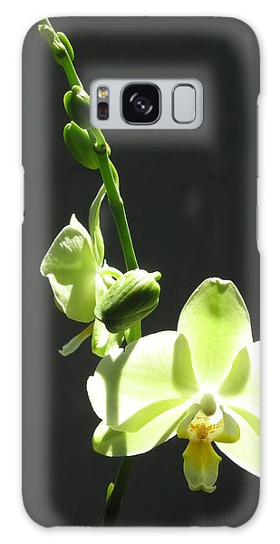 Green Orchids Galaxy Case