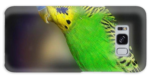Green Parakeet Portrait Galaxy Case