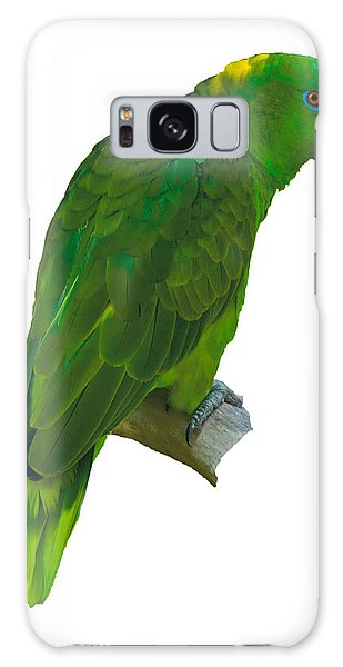 Green Parrot On White  Galaxy Case