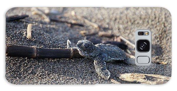 Green Sea Turtle Hatchling Galaxy Case