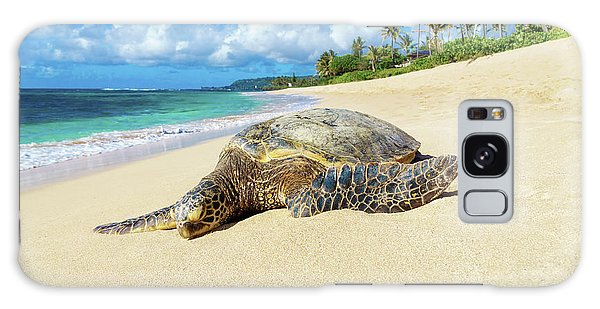 Green Sea Turtle Hawaii Galaxy Case