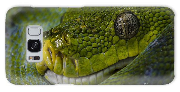Green Snake Galaxy Case