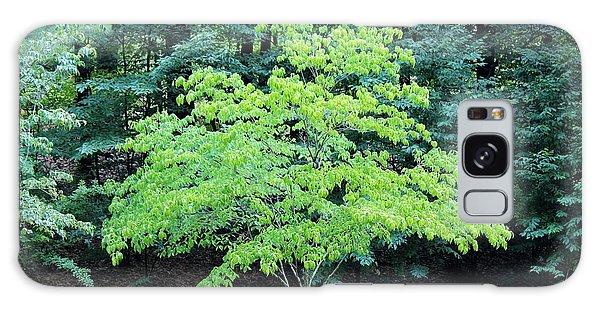 Green Standout Tree Galaxy Case