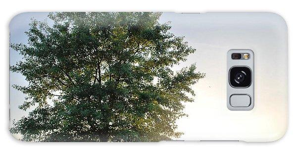 Green Tree Bright Sunshine Background Galaxy Case by Matt Harang