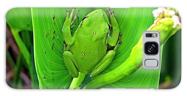 Green Tree Frog Galaxy Case