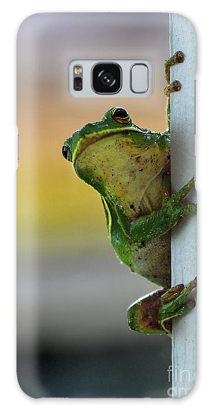 Green Tree Frog  It's Not Easy Being Green Galaxy Case