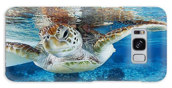 Turtle Galaxy Case - Green Turtle by Alexis Rosenfeld
