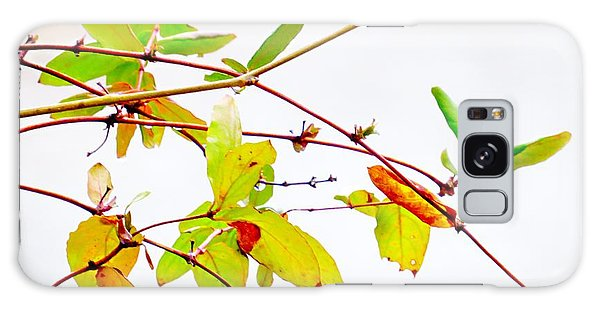 Green Twigs And Leaves Galaxy Case