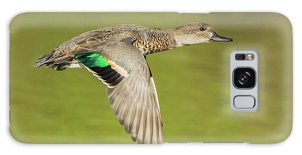 Green-winged Teal 6320-100217-2cr Galaxy Case