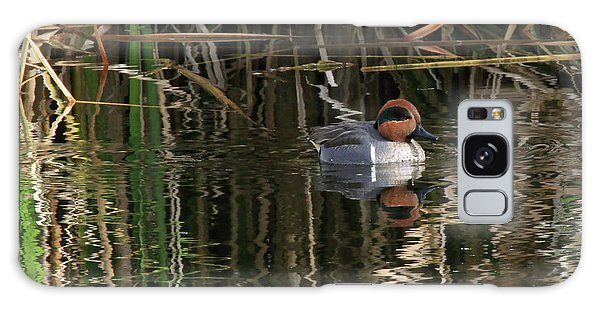 Green Winged Teal  Galaxy Case