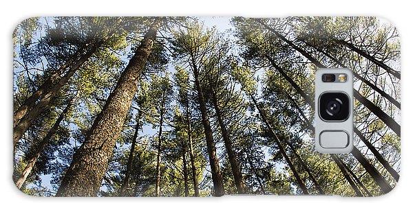 Greenbank Pines Galaxy Case