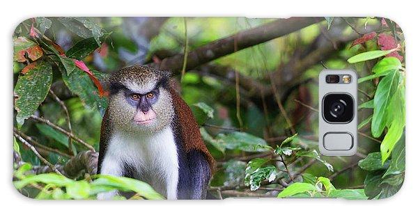 Grenada Monkey 2 Galaxy Case