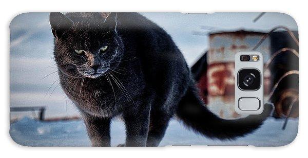 Grey Cat, Grey Mood Galaxy Case