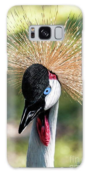 Grey Crowned Crane Gulf Shores Al 2041 Galaxy Case
