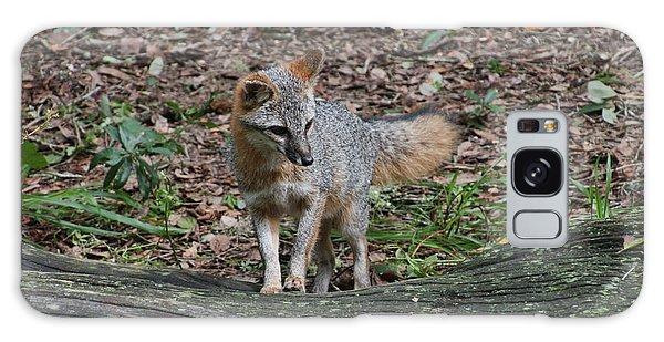 Grey Fox Galaxy Case
