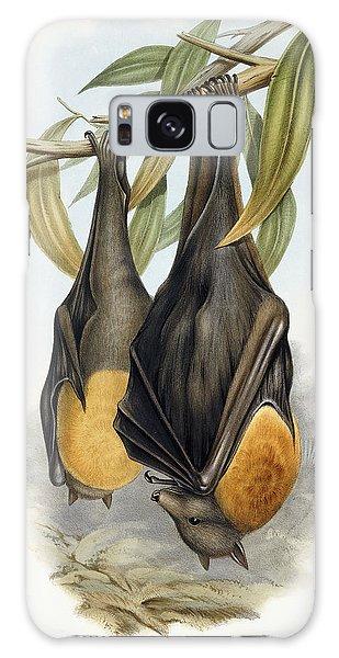 Grey Headed Flying Fox, Pteropus Poliocephalus Galaxy Case by John Gould