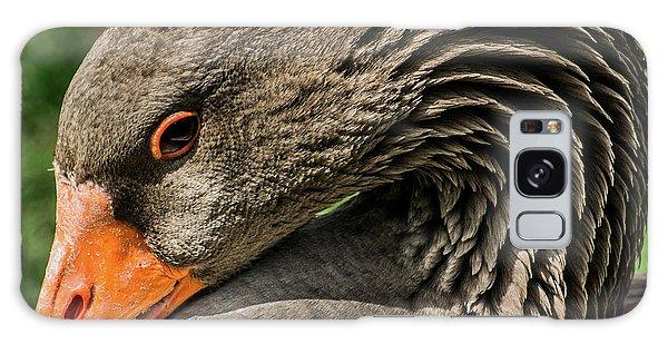 Greylag Goose Portrait  Galaxy Case by Gary Whitton