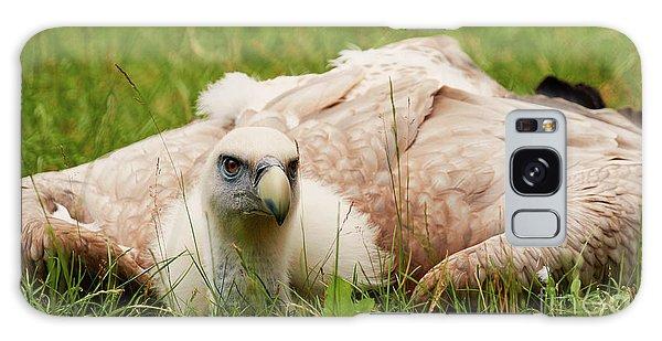 Griffon Vulture Galaxy Case