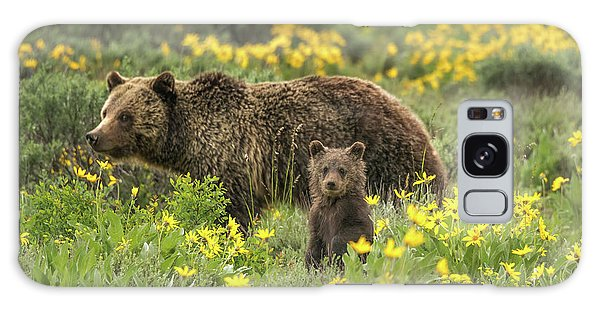 Grizzlies In The Wildflowers Galaxy Case