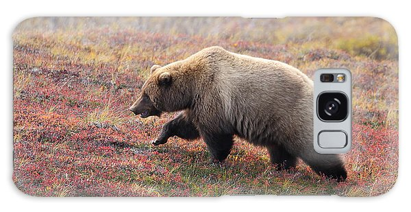 Grizzly At Denali National Park Galaxy Case