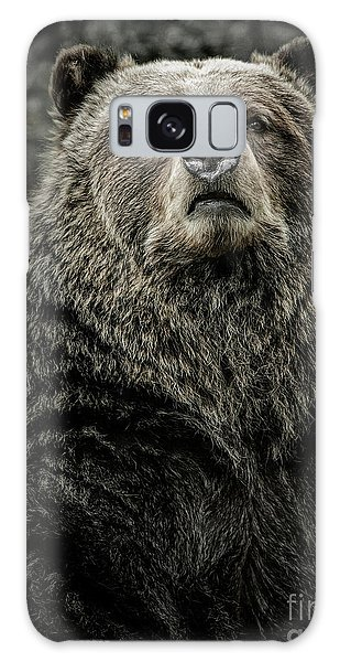 Grizzly Bear Galaxy Case
