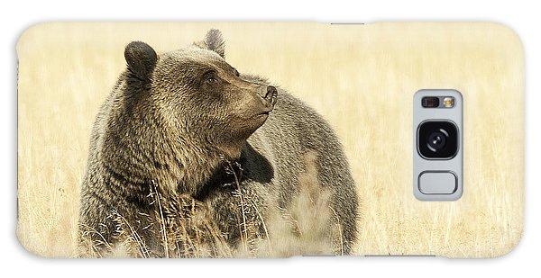 Grizzly Bear Galaxy Case