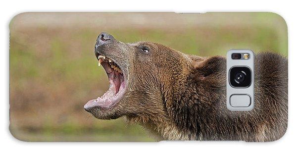 Grizzly Bear Growl Galaxy Case