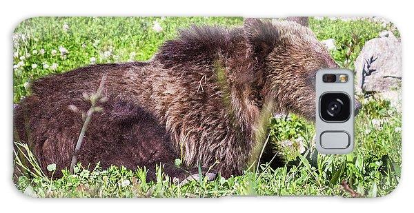 Grizzly Cub  Galaxy Case