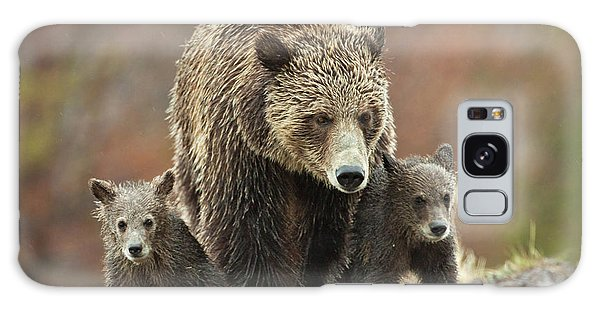 Grizzly Family Galaxy Case