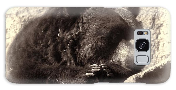 Grizzly Portrait Galaxy Case by Erica Hanel