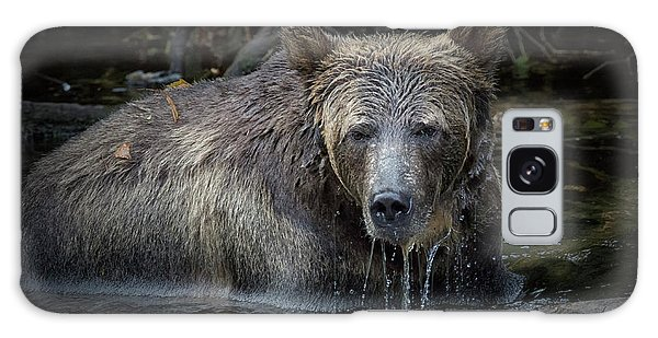 Grizzly Bears Galaxy Case - Grizzly by Randy Hall