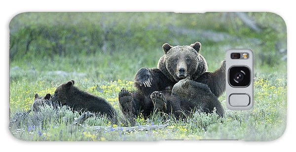Grizzly Romp - Grand Teton Galaxy Case by Sandra Bronstein