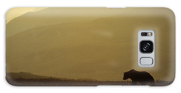 Grizzly Bears Galaxy Case - Grizzly Stalks The Alaskan Tundra by Michael S. Quinton