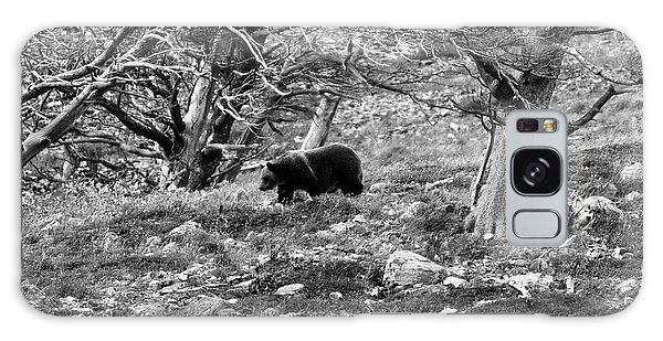 Grizzly Bears Galaxy Case - Grizzly Walking Through Dead Trees - Black And White by Mark Kiver