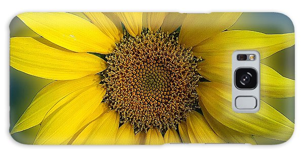 Groovy Sunflower Galaxy Case by Jeanne Forsythe