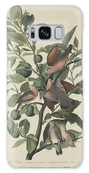Ground Dove Galaxy Case by Dreyer Wildlife Print Collections