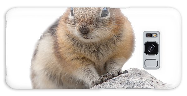 Ground Squirrel T-shirt Galaxy Case
