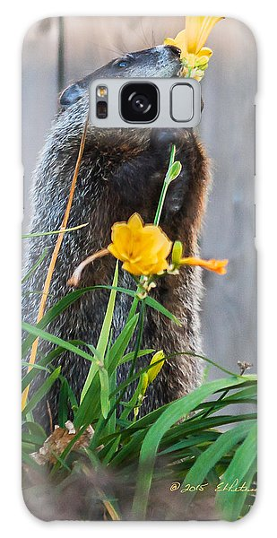 Groundhog And Flowers Galaxy Case by Edward Peterson