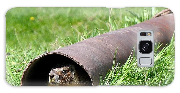 Groundhog In A Pipe Galaxy Case