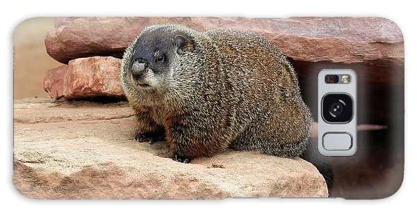 Groundhog Galaxy Case - Groundhog by Louise Heusinkveld