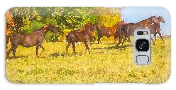 Group Of Morgan Horses Trotting Through Autumn Pasture. Galaxy Case