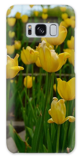 Grouping Of Yellow Tulips Galaxy Case