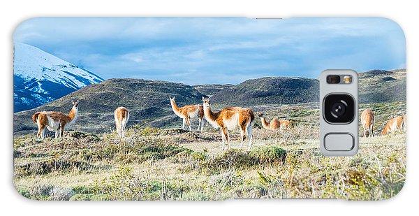 Guanaco In Patagonia Galaxy Case