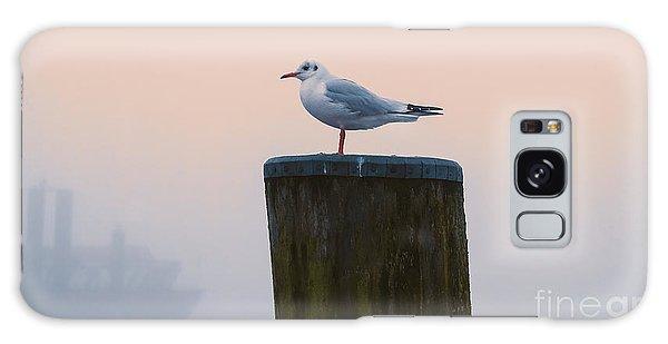 Gull And Fog Galaxy Case