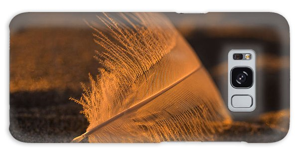 Gull Feather At Sunset Galaxy Case