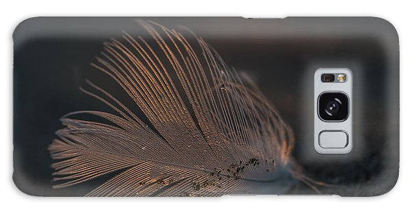 Gull Feather On A Beach Galaxy Case
