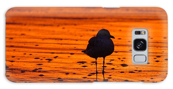 Gull Caught At Sunrise Galaxy Case by Allan Levin