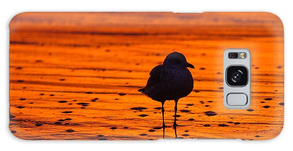 Gull Caught At Sunrise Galaxy Case
