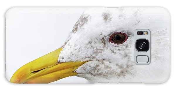 Gull Portrait Galaxy Case